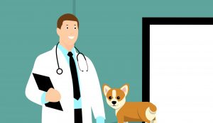 Cartoon Vet and Dog